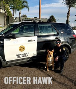 OFFICER HAWK