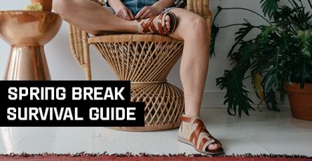 Spring Break Survival Guide