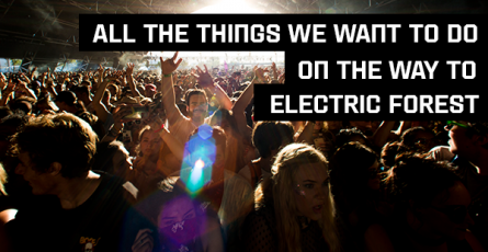 electric forest_blog