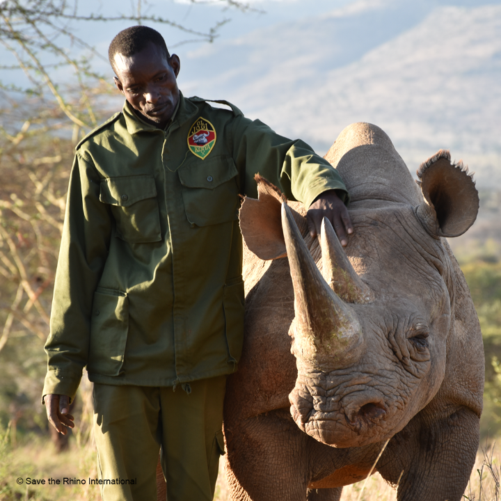 Ranger & Rhino