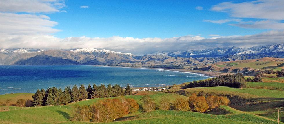 Godzone New Zealand