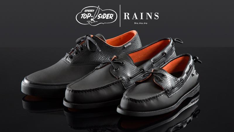 rains_feature