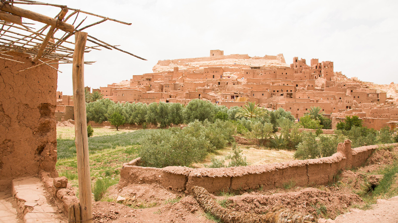 op-morocco-feature